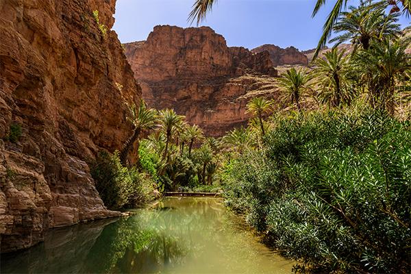 Dag 5 - Natuur / cultuur rondreis Zuid-Marokko vanuit Agadir 50+