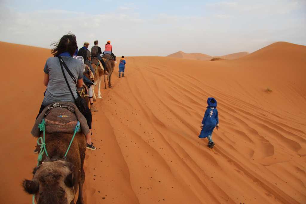 Dag 11 - Combinatie Rondreis Zuid-Marokko & Marrakech achter de schermen met Atlasgebergte