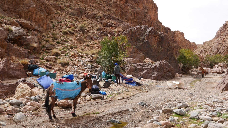 Wandelen Hoge Atlas kampeertocht – Jebel Siroua – met Nunatak