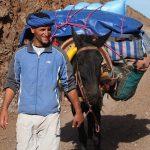 Marokko wandelen Hoge Atlas met bagagevervoer op muildieren