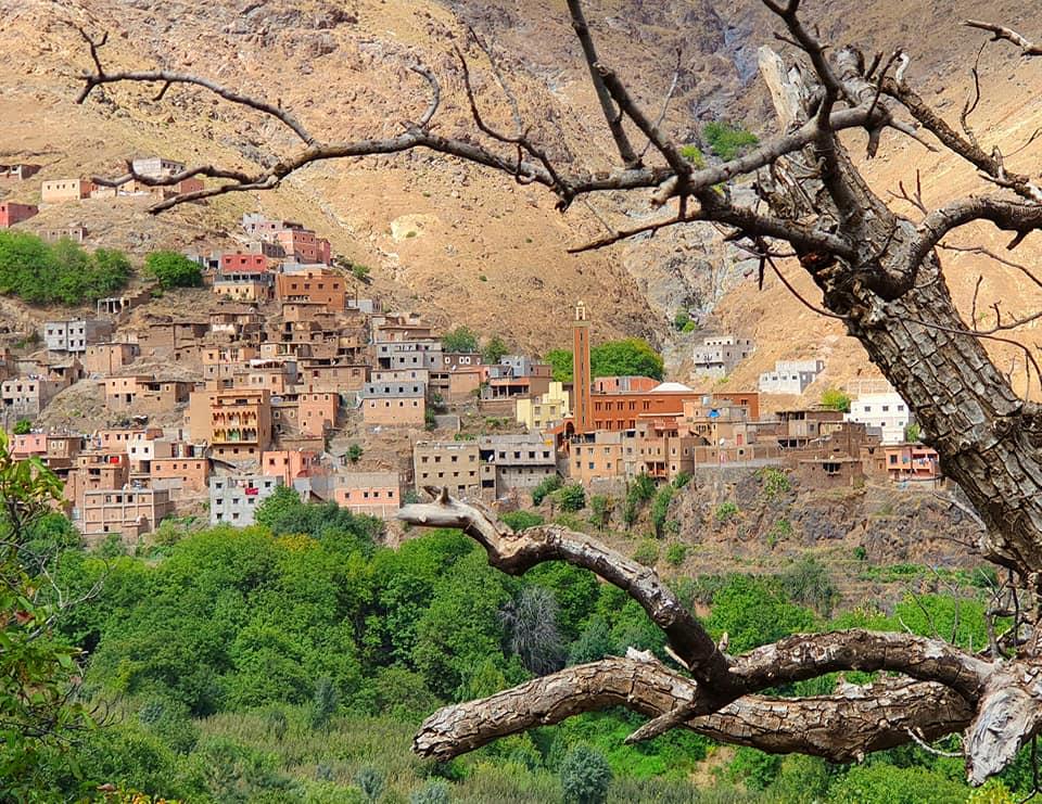 Dag 5 - Groepsreis Marrakech & meer - NL reisleider