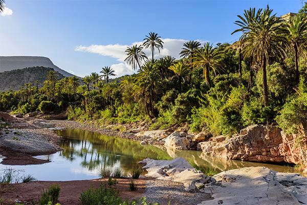 Dag 2 - Natuur / cultuur rondreis Zuid-Marokko vanuit Agadir 50+