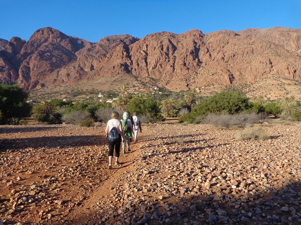 Dag 4 - Natuur / cultuur rondreis Zuid-Marokko vanuit Agadir 50+