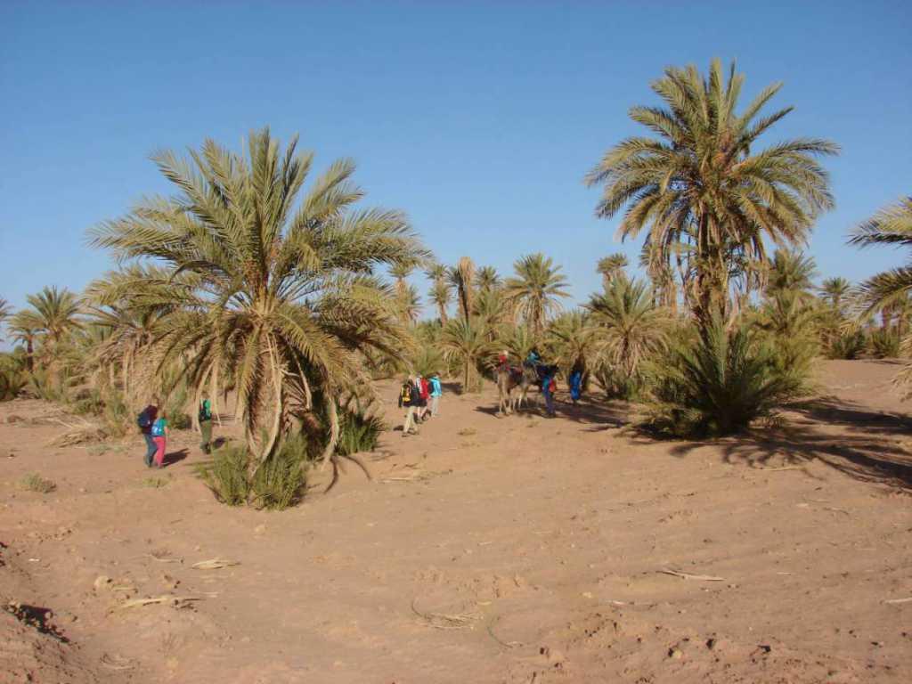 Sahara trektocht – ResetT – jongeren 18+ met een uitdaging (coaching-reis)