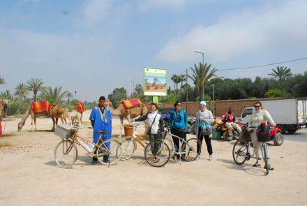fietsen en kamelen
