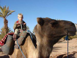 kamelensafari door de woestijn