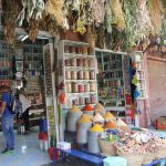 Marokko Kruidenreis: van Harry Potter-markten tot smulkaravanserai*