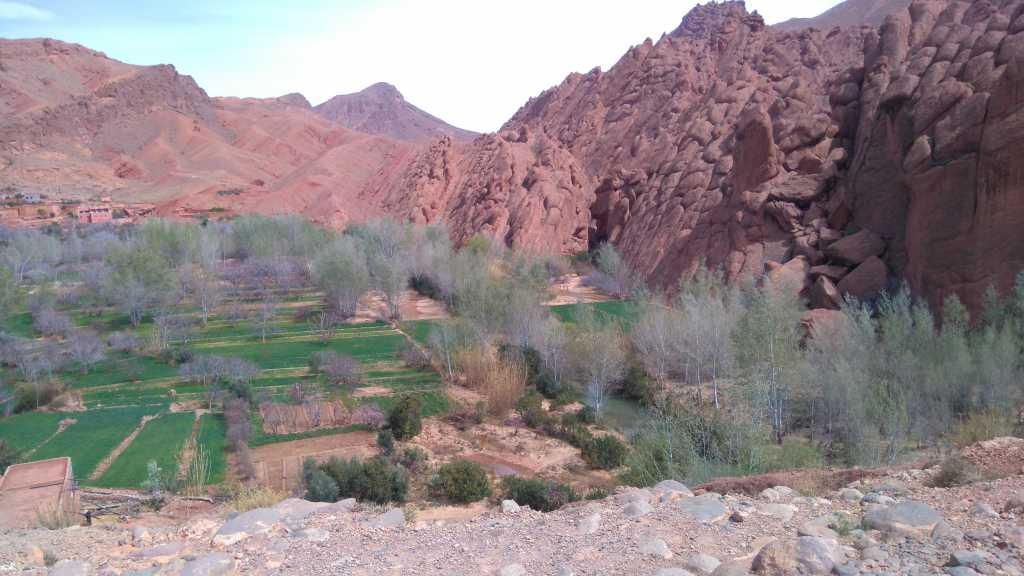 Dag 3 - Foto- en cultuurreis Marrakech + Zuid-Marokko