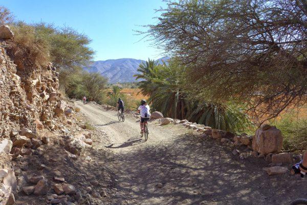 mountainbiken Draavallei met palmbomen
