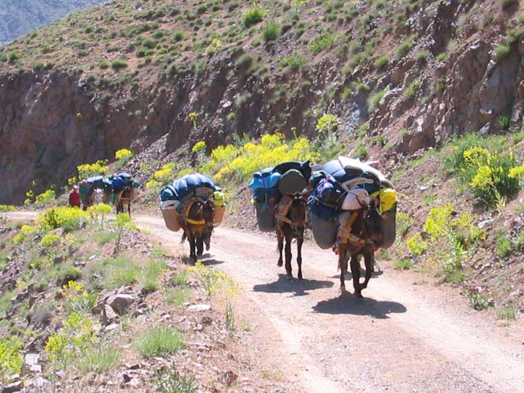 Dag 1 - bouwsteen Toubkal Trek - in 3 dagen naar de top