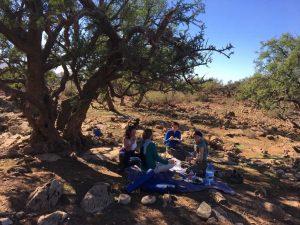 picknick_natuur