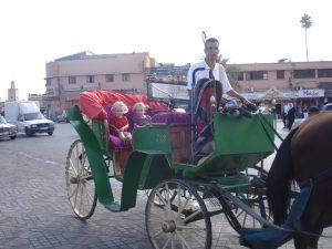 reizen met kinderen