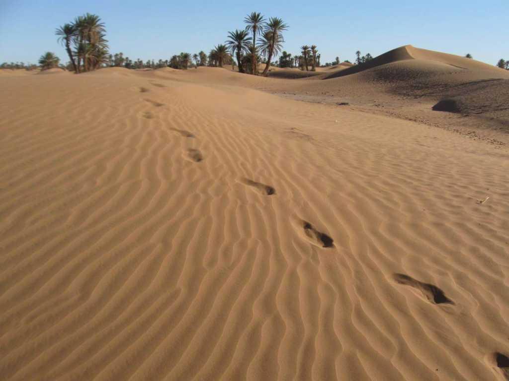 Dag 5 - Marokko Yoga Mystical Sahara