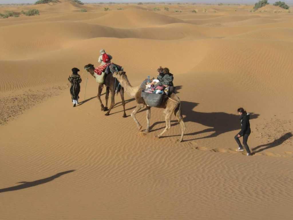 Woestijn wandeltocht met kamelen vanaf Marrakech